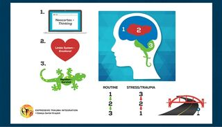 Dr. Odelya Gertel Kraybill Expressive Trauma Integration ™